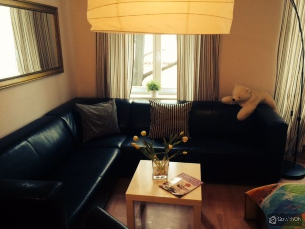 Comfortable Apartment In Berlin Mitte